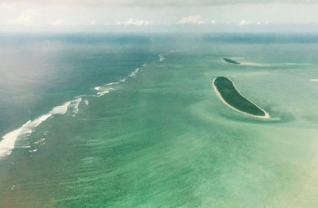 Rodrigues1